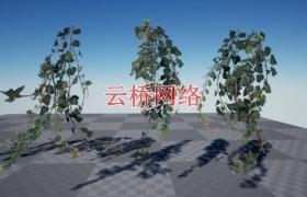 ue4商城资源Ivy Foliage Pack 4K常春藤叶包4K