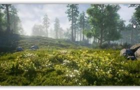 ue4自然景观场景扩展资料