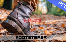 ue4商城资源Footstep Sounds Pro专业脚步声