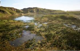 ue4商城资源Meadow Wetlands Landscape草甸湿地景观