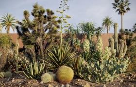 Maxtree出品草木植物3D模型Vol.17合集